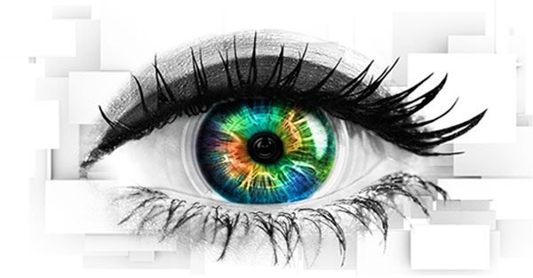 Celebrity Big Brother and Big Brother 'AXED' by bosses