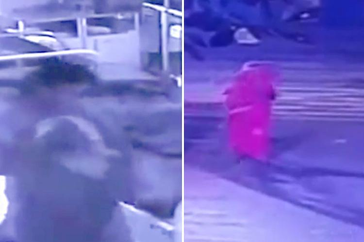 Chilling moment woman steals newborn baby boy from hospital as he slept next to his mum