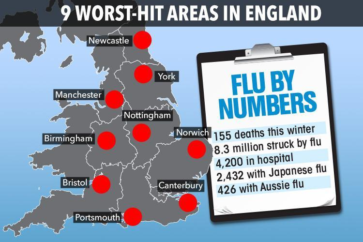 Flu deaths rise to 155 in the UK as number of people hit by the virus 'remain stable' at 8.3 million