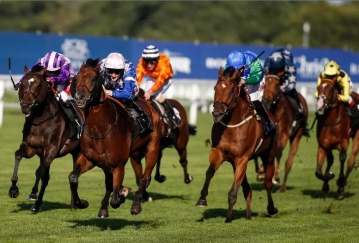 Horse Racing Tips, Monday January 25: Picks for Kelso, Warwick and Southwell