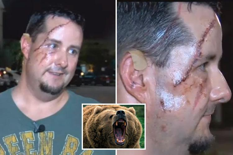 Man mauled by bear on his doorstep when beast tore at his FACE moments after he left his house