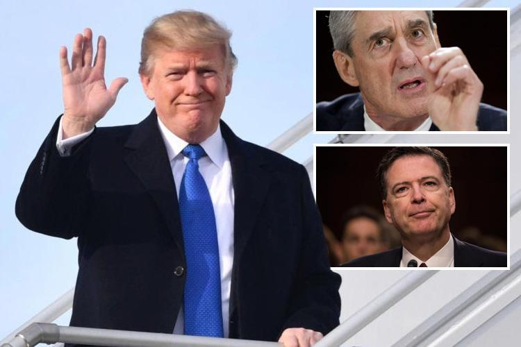 Donald Trump says he's 'looking forward' to being quizzed over alleged Russian collusion and would 'love to' speak to special prosecutor Robert Mueller