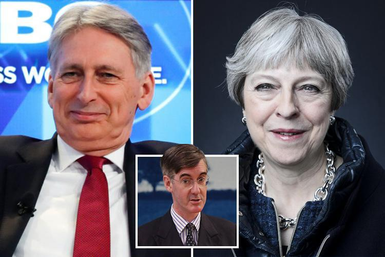 Top Tory MPs blast 'disloyal' Philip Hammond and urge PM to sack him over anti-Brexit stance