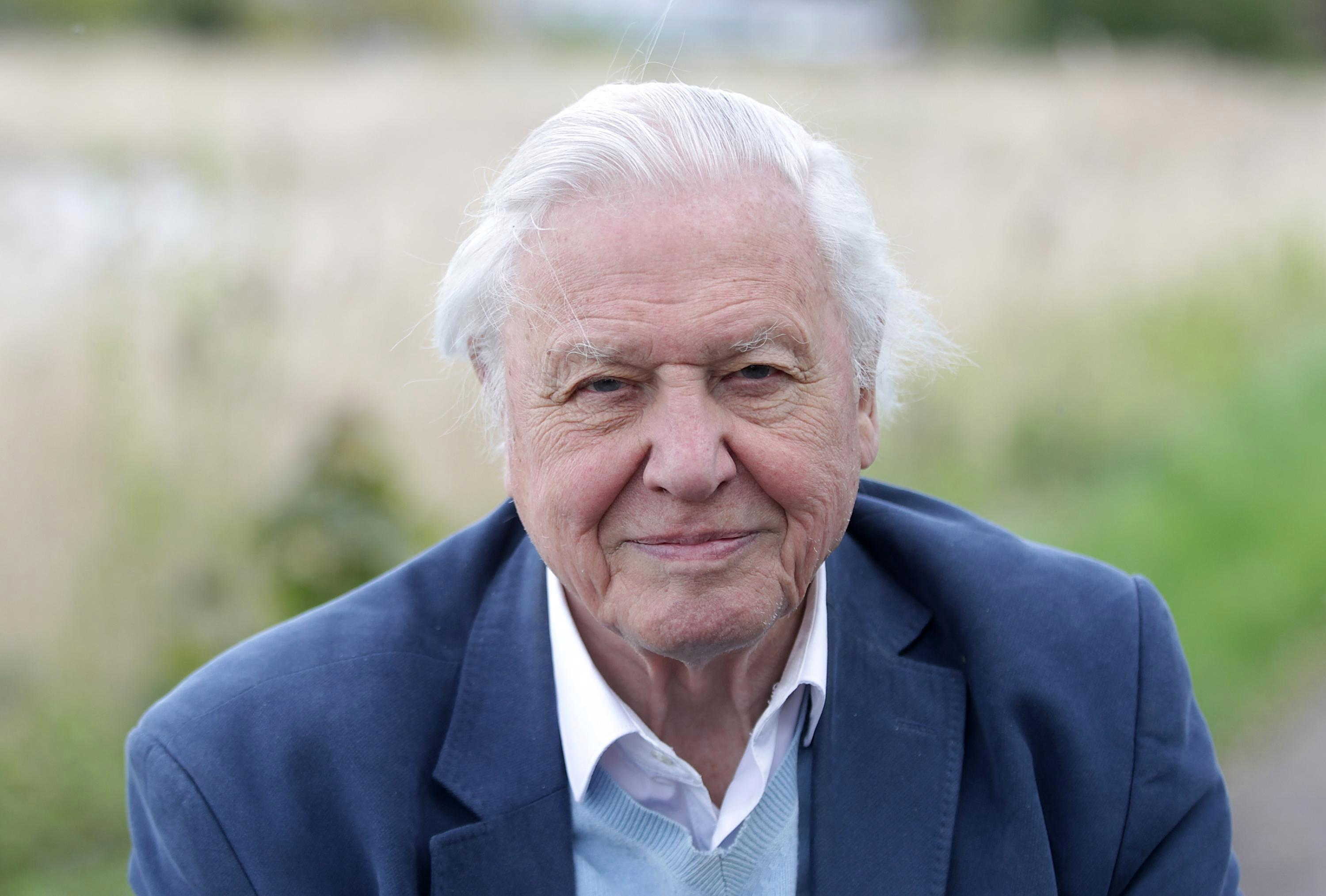 How old is David Attenborough, what documentaries has he presented, what's the Blue Planet narrator's net worth and who were his wife and brothers?