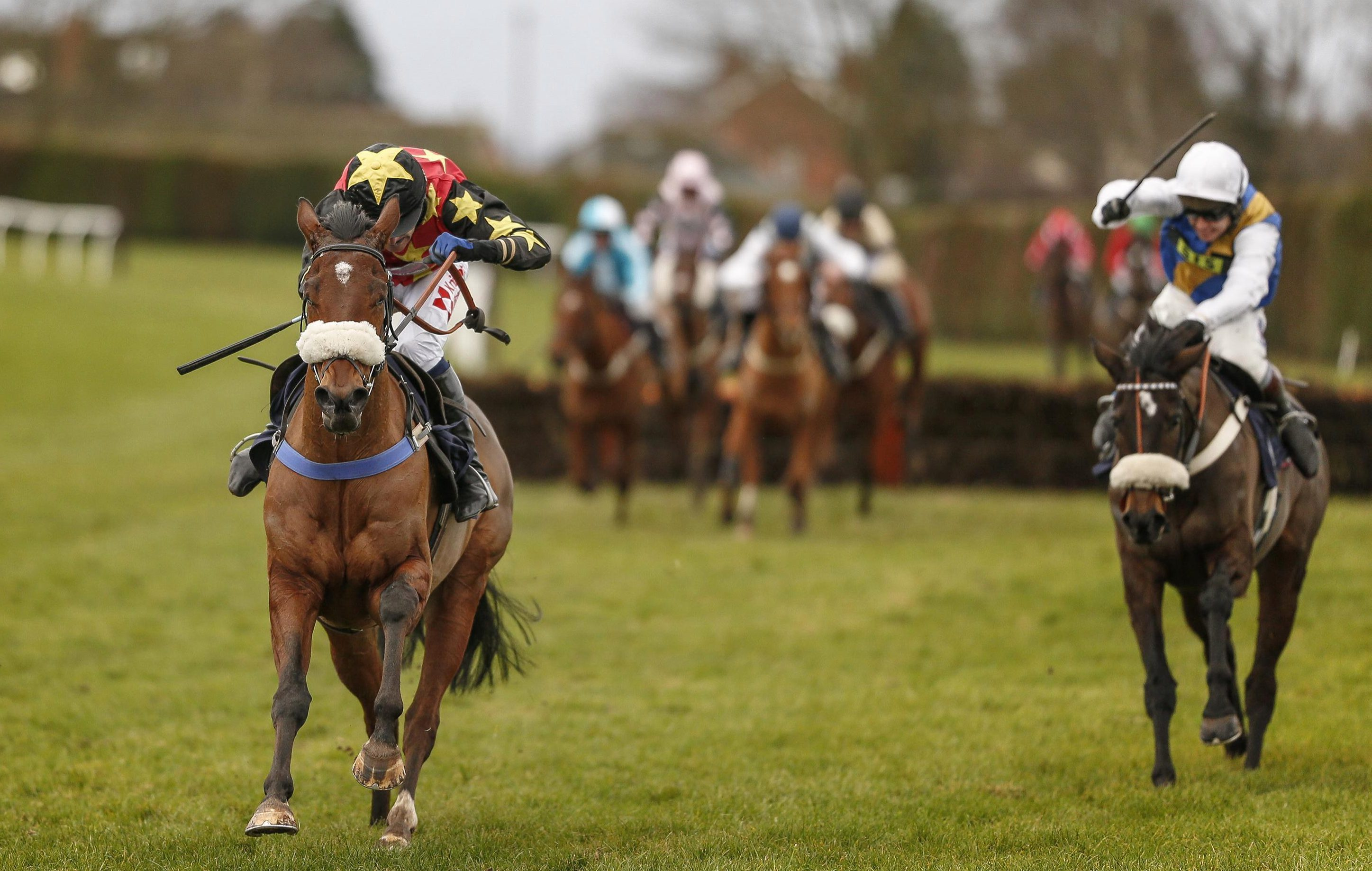 Racing tips: Hereford and Plumpton – betting preview for the racing this Monday, January 29