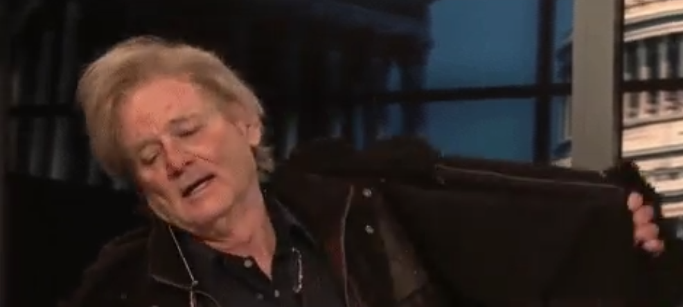 Bill Murray makes surprise SNL appearance as Steve Bannon
