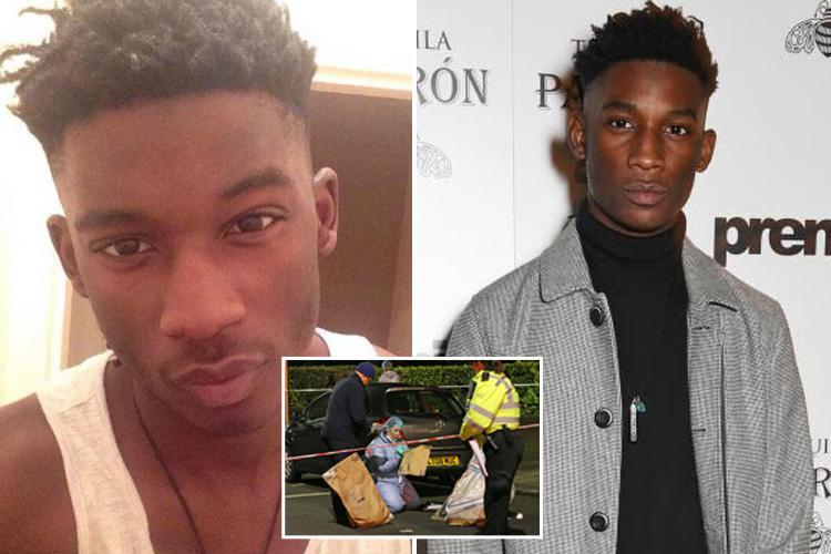 Friends of male model who was knifed in 'robbery gone wrong' hail him as an 'amazing young man'