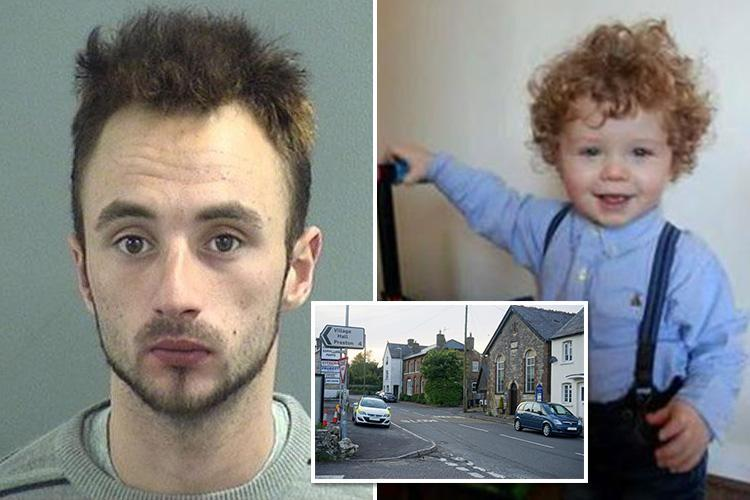 Social services missed chances to stop violent thug who beat two-year-old tot to death