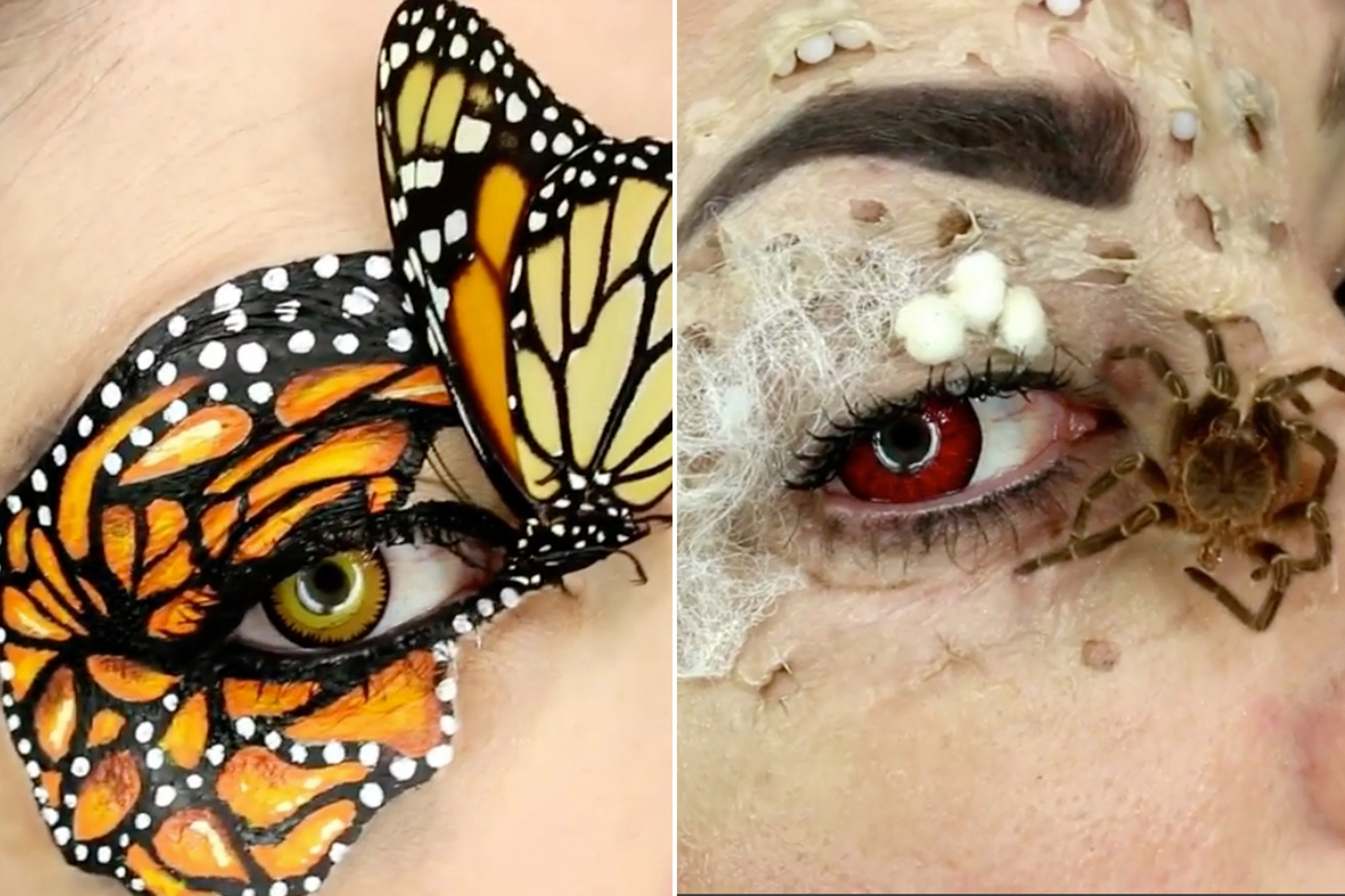 Makeup artist uses real dead insects on her face
