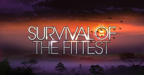 Survival Of The Fittest line up 'revealed'