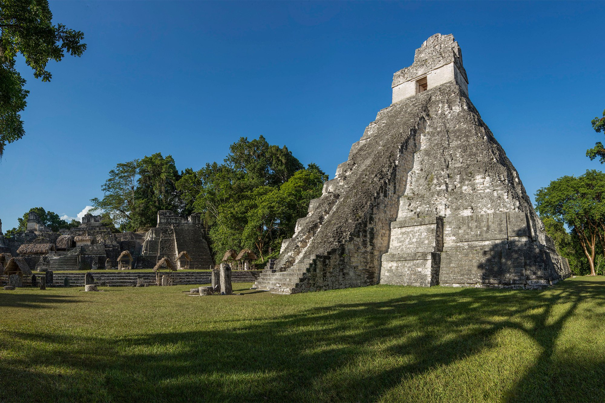 Discovery below jungle canopy rewrites Mayan history