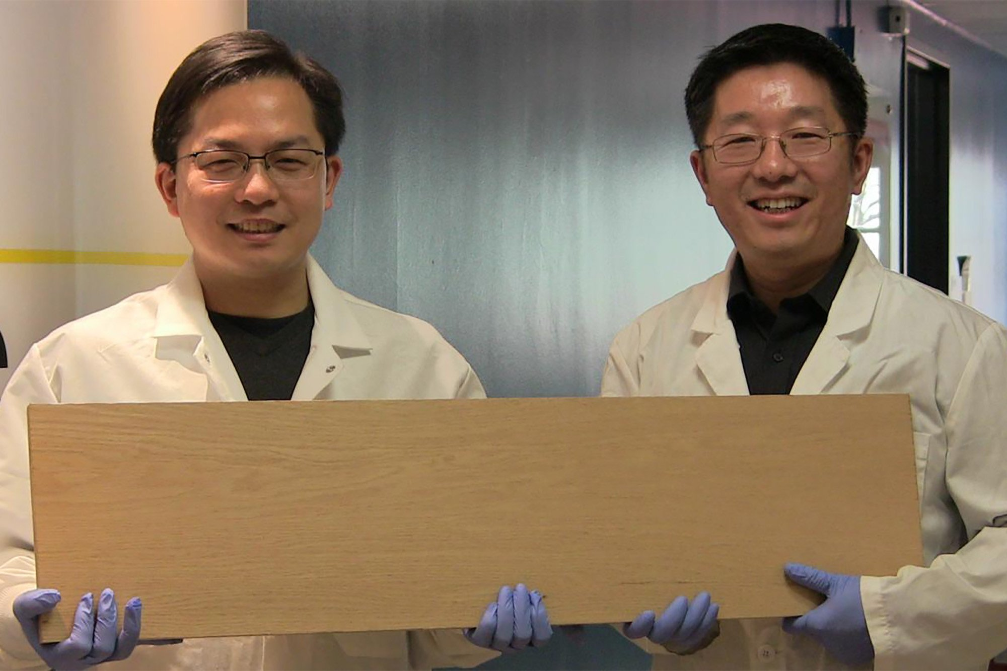 "Scientists invent ""super wood' that could replace steel"