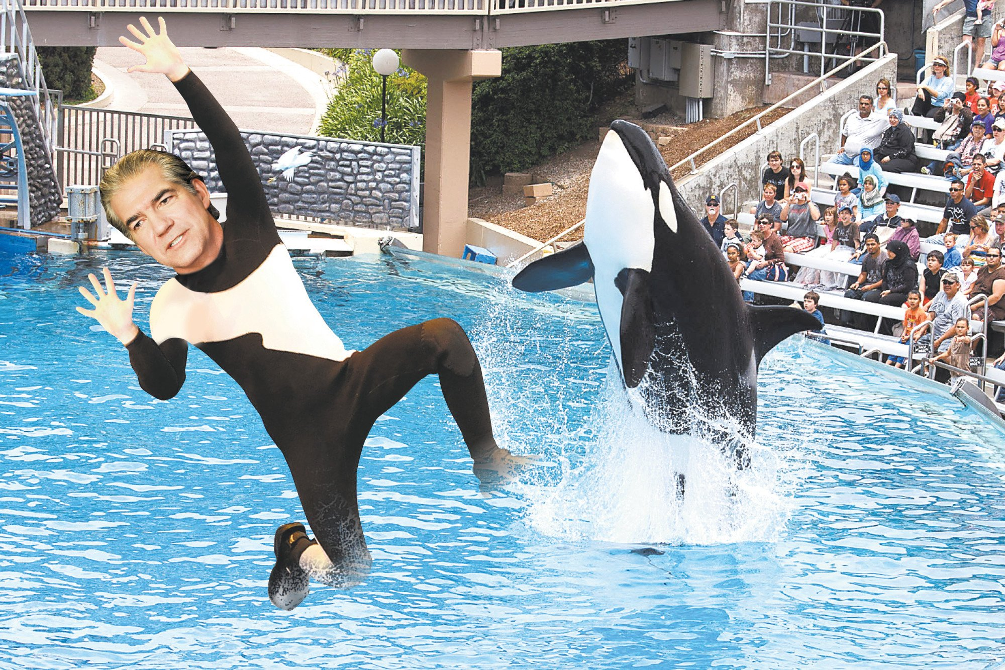 SeaWorld CEO out as park attendance continues to sink