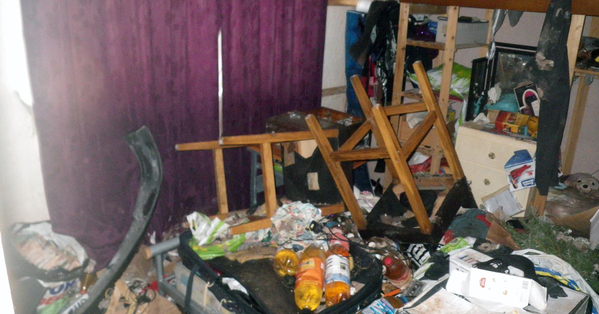 Couple's home from hell with 14 cats surrounded by faeces and bottles of urine