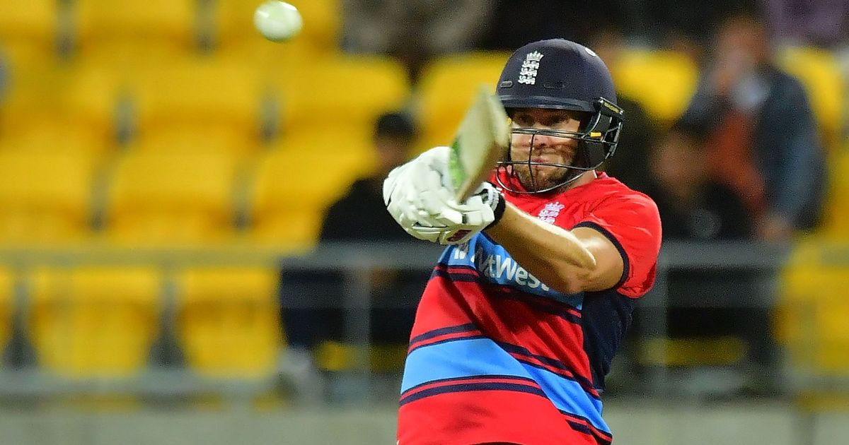 England fall short in Twenty20 chase against New Zealand in Wellington