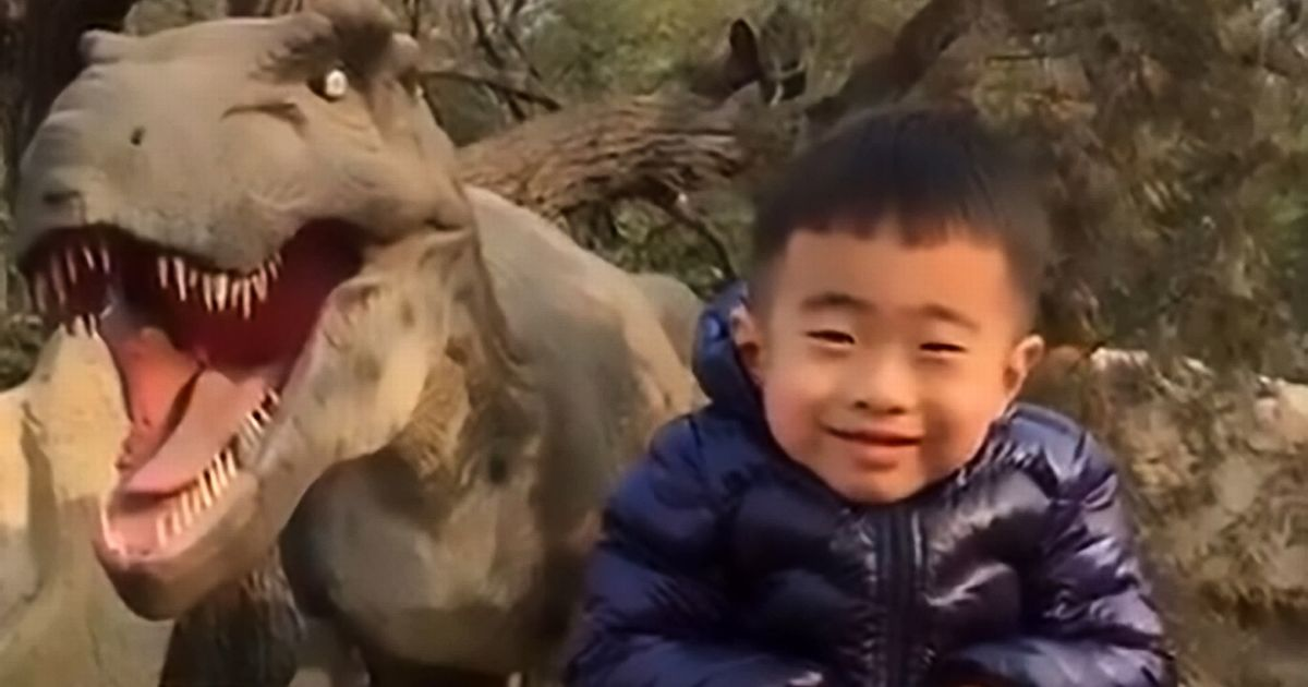 Adorable boy tries his best not to look terrified in front of fake dinosaur