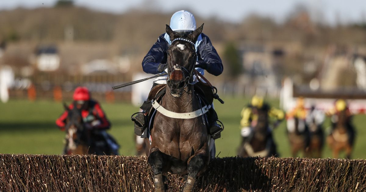 Horse racing tips – the best bets for Monday February 26