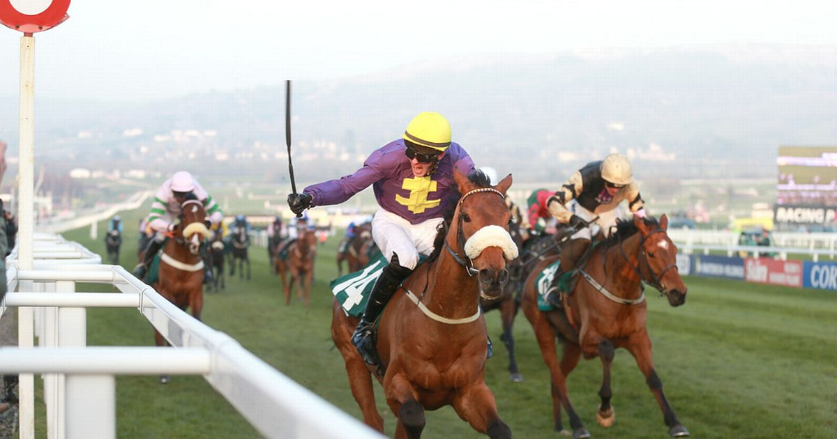 Horse racing tips – the best bets for Wednesday February 14