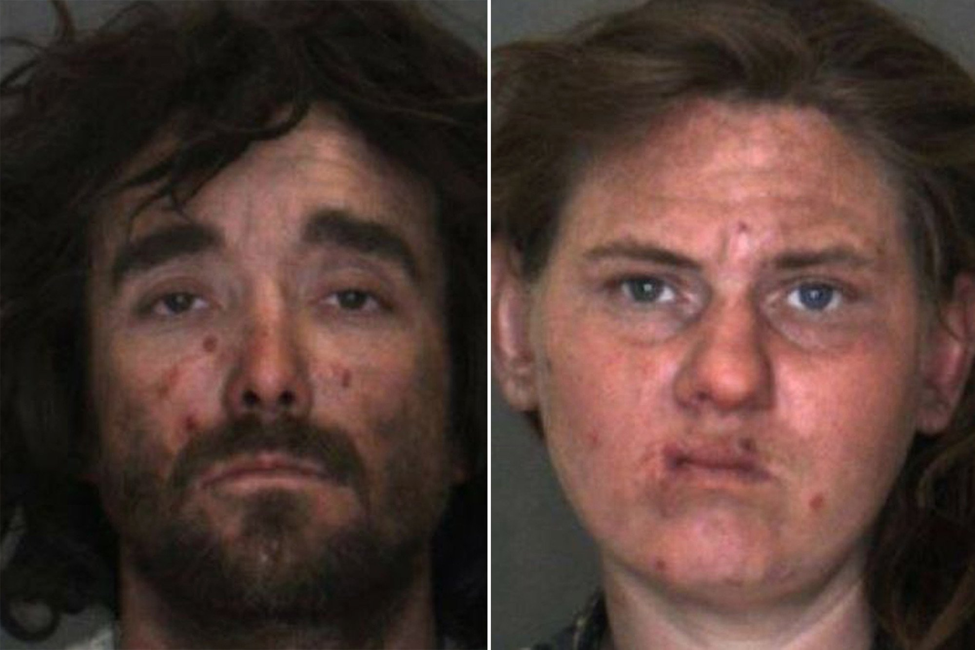 Pair charged with abusing son may have performed sex acts on dogs: cops