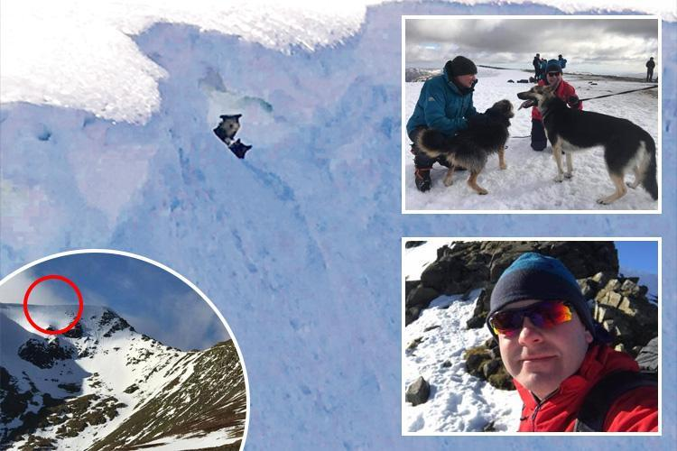 Hero climber rescued two dogs stranded for 48 hours up a freezing mountain
