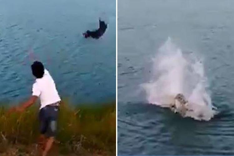 Fury as evil thug hurls terrified puppy into a crocodile-infested lake… and it only takes a second before a bloodthirsty beast snaps it up