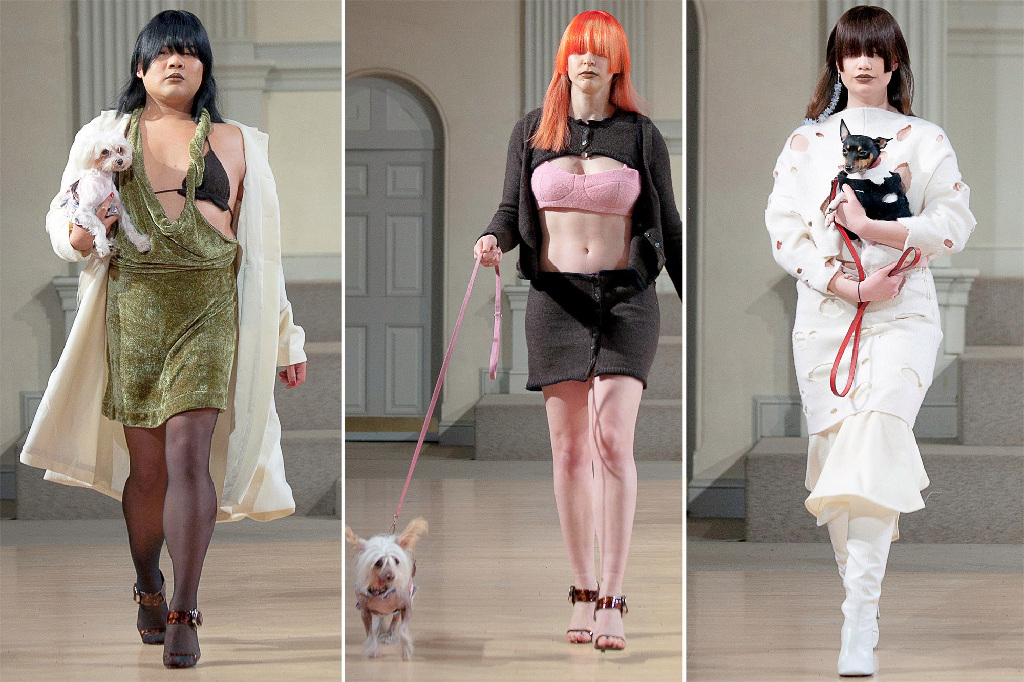 Puppy models take over the Fashion Week catwalk