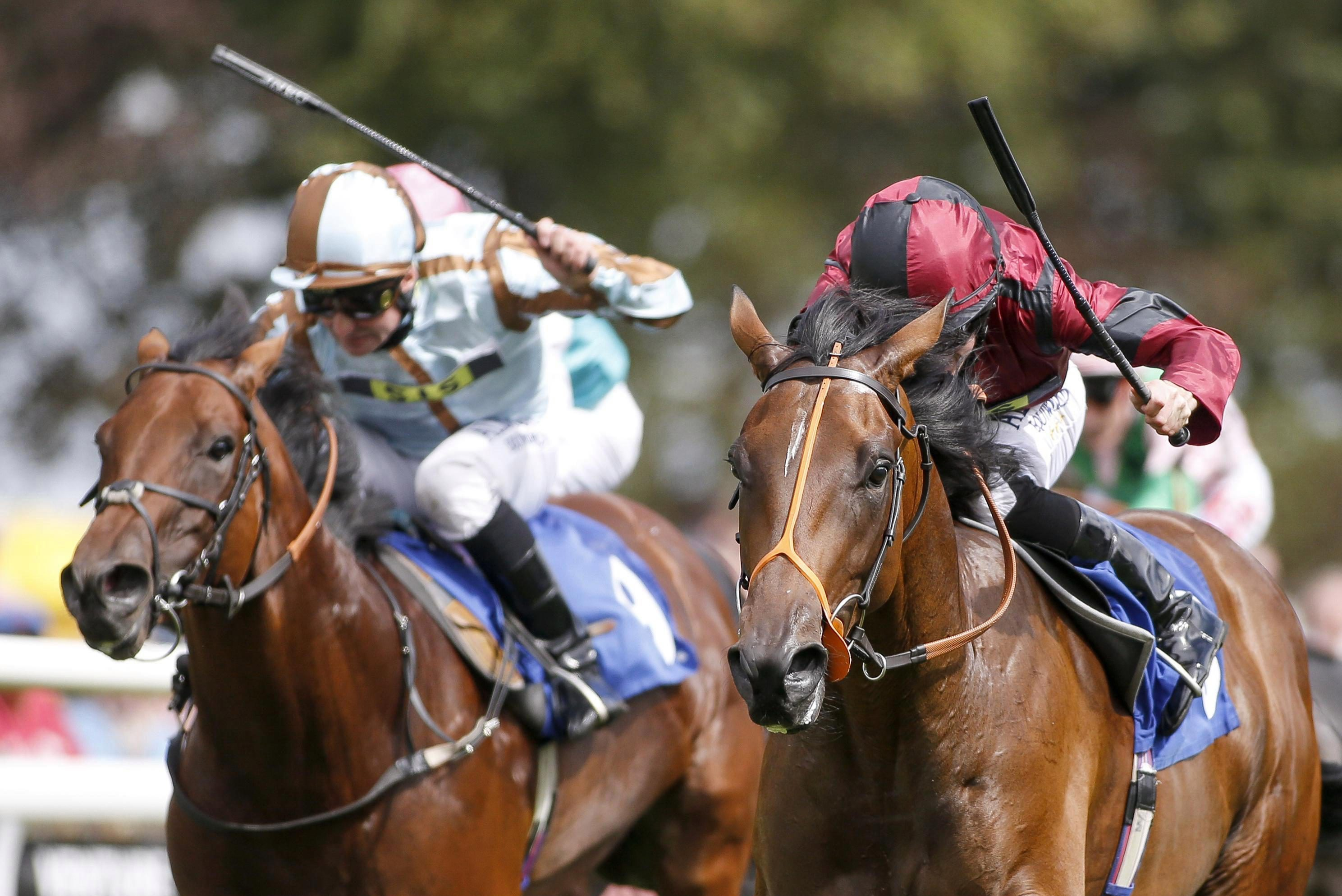 Horse racing tips: Southwell – Templegate's betting preview for the racing this Tuesday, February 13