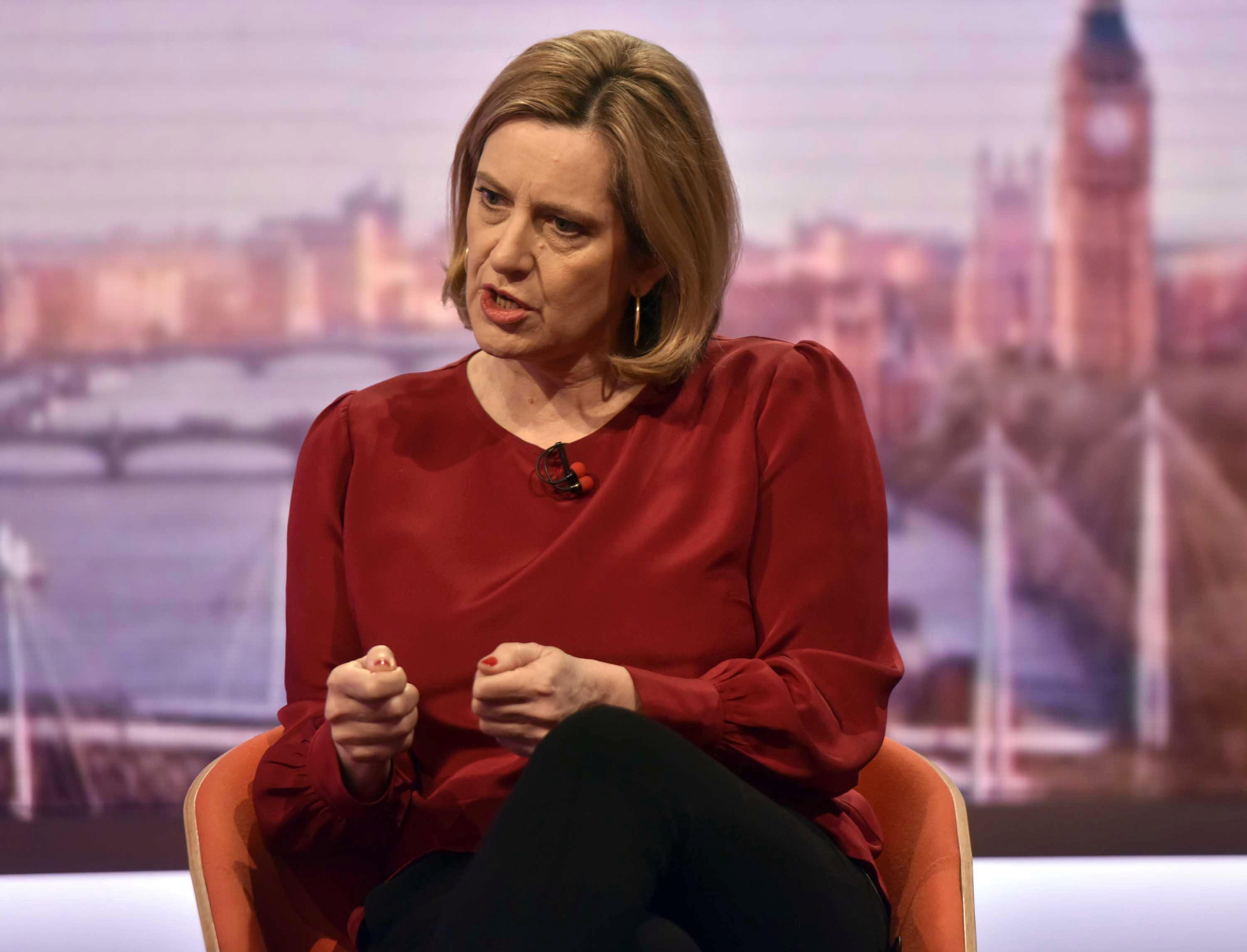 Amber Rudd hits out at Brexiteers and insists the cabinet ARE united on what our EU exit will look like