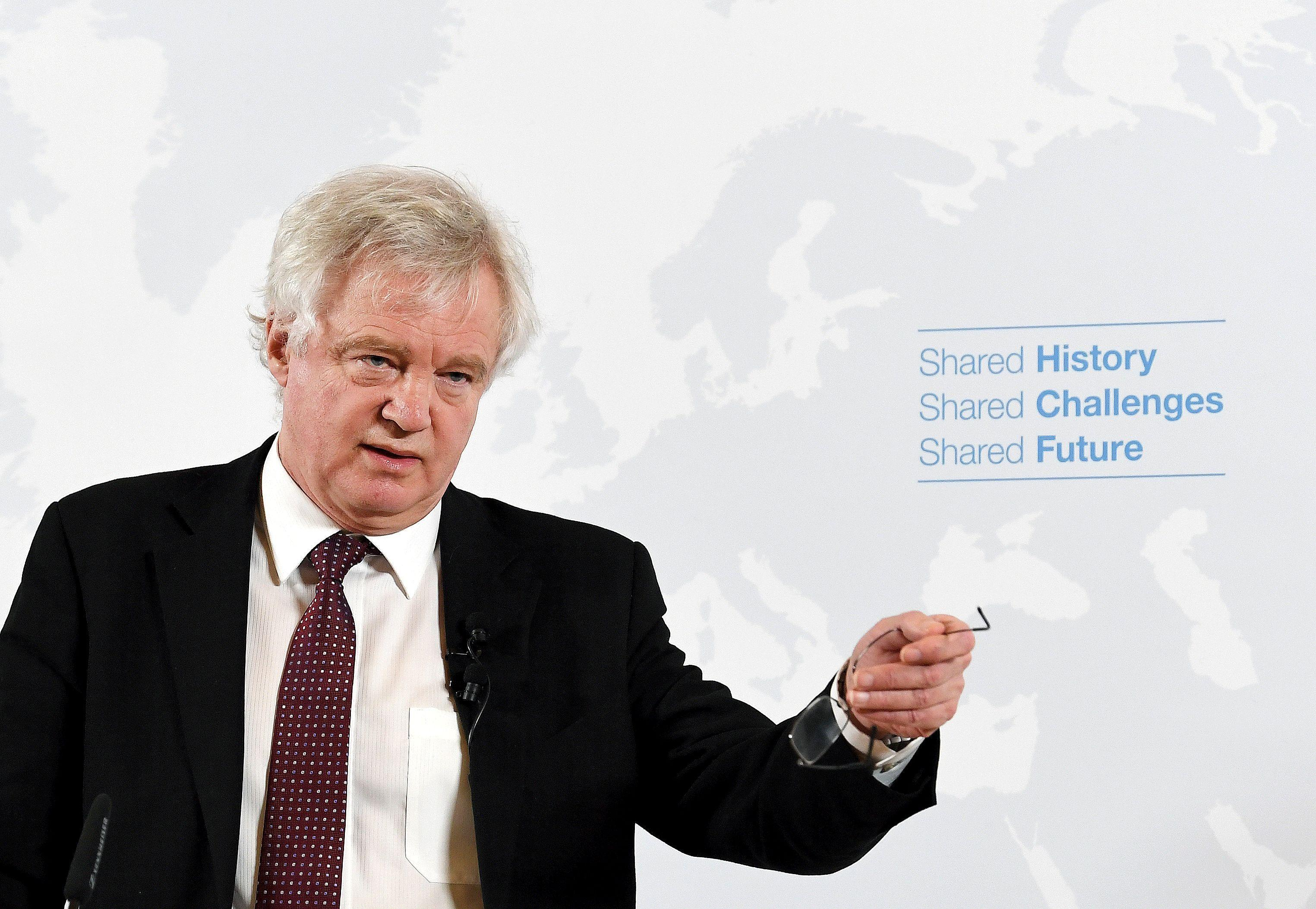 David Davis says a Brexit deal with the EU is 'well on the cards' for later this year as he denies claims he's too lazy to negotiate properly
