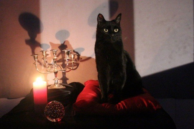 Salem From Netflix's 'Sabrina the Teenage Witch' Would Like to Say Hello