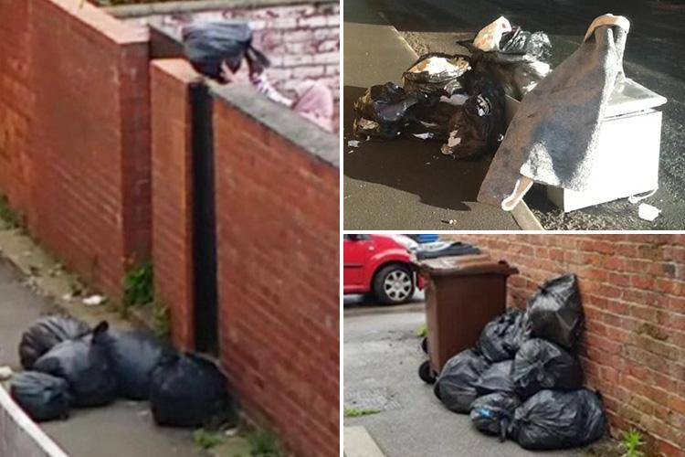 Woman, 50, caught on camera throwing rubbish bags over her back wall and into an alley behind