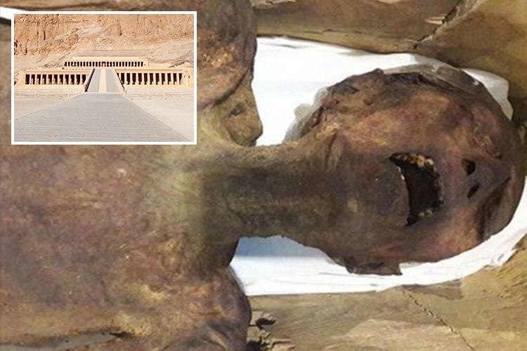 Mystery of 'screaming Egyptian mummy' which has baffled archaeologists for years finally resolved
