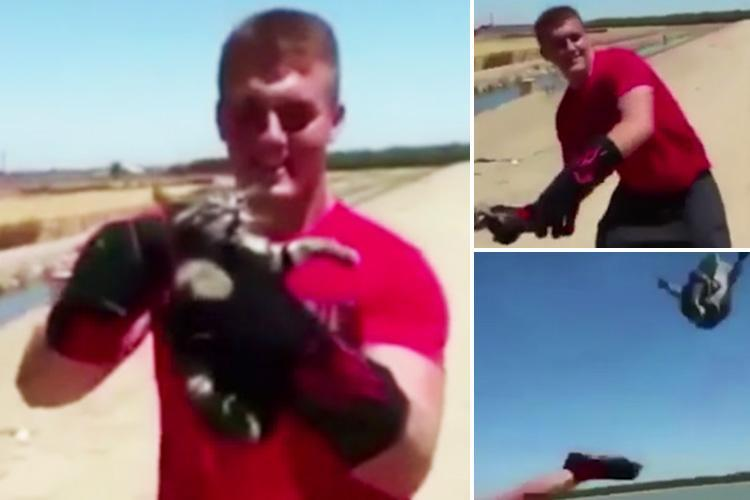 Horrifying video of an evil thug throwing a kitten into a lake goes viral as teen schoolboy is arrested for animal cruelty