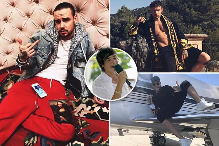 Liam Payne's new cringeworthy image makes him more Ali G than Jay Z