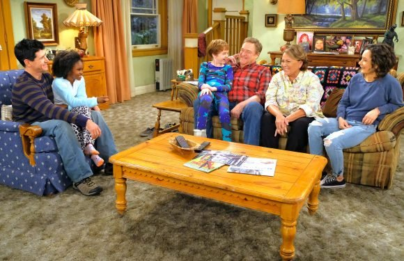 Why Roseanne is not a liberal mouthpiece and Mark's tricky story line