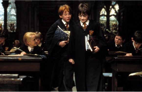 1 Tiny Detail From Harry Potter Proves That Ron ALWAYS Thought of Harry as a Brother
