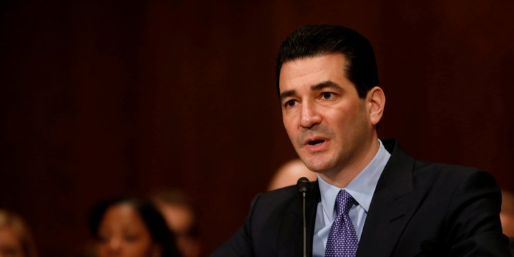 The FDA commissioner just laid out how 'everybody wins' in the US healthcare system except the patients