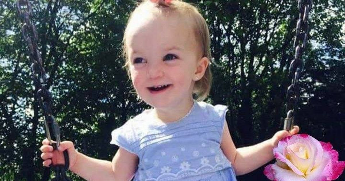 Hero police officers try to save girl, 2, who died after car went into river