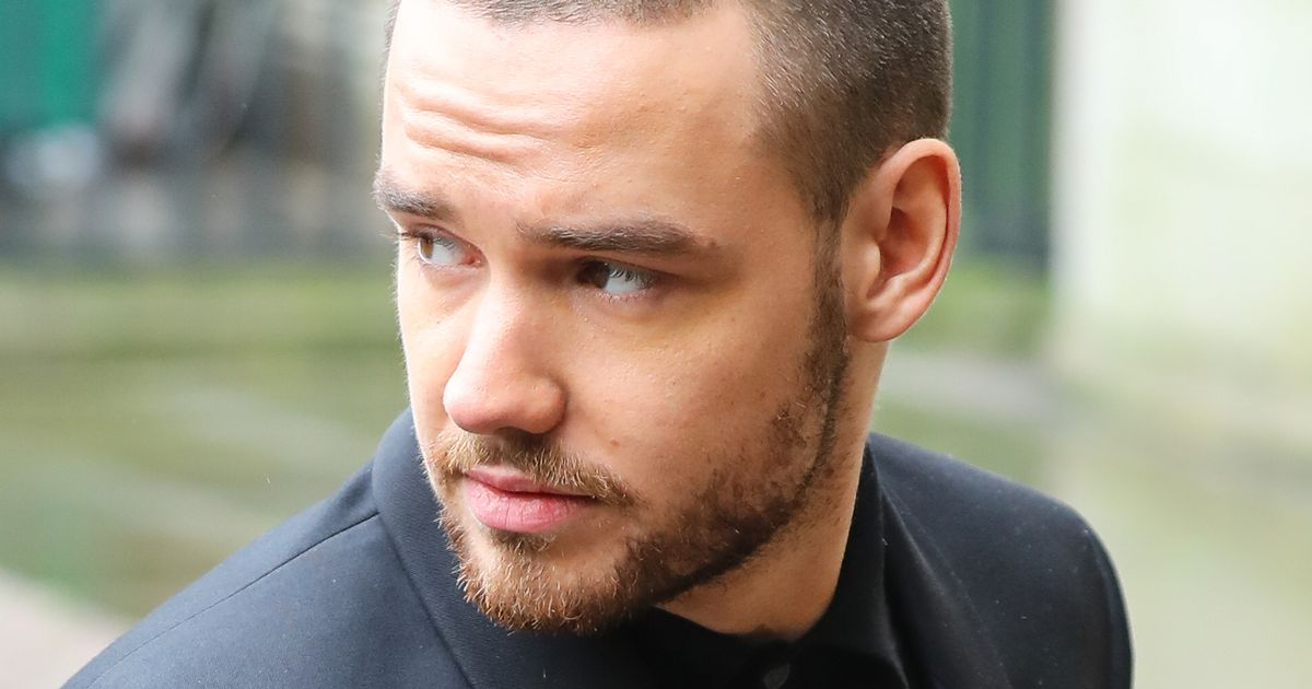 Fans rally round Liam Payne as he hits back at follower who called him 'trash'