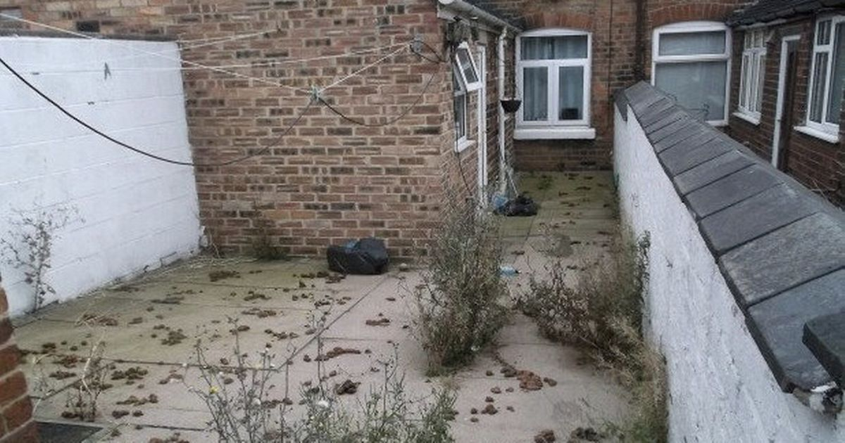 Woman warned she could face jail over piles of rubbish and dog poo in her garden