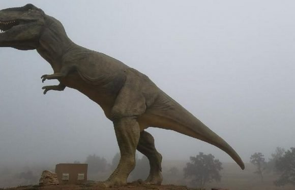 Life-size T-Rex bursts into flames at dinosaur park sparked by electrical fault