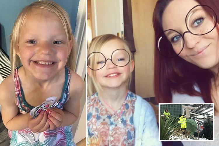 Mum's heartbreaking plea for twin of girl, 7, killed when car ploughed into home in snow