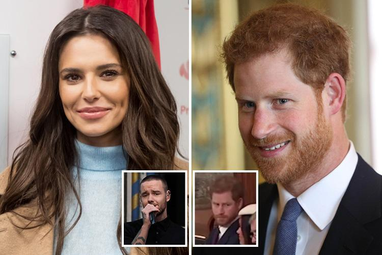 Did Prince Harry raise his eyebrows at Liam Payne because he's Team Cheryl?