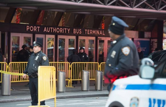 The Port Authority's overpaid police are a genuine menace