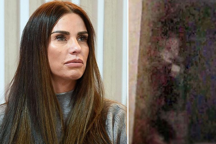 Katie Price mocked by fans who say her 'ghostly pics' in her Sussex home are her own reflection