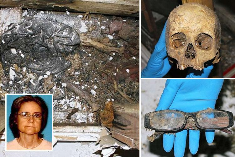 Rat-infested skeleton of missing woman found in WALL of home by new owners three years after she fell through attic and got stuck