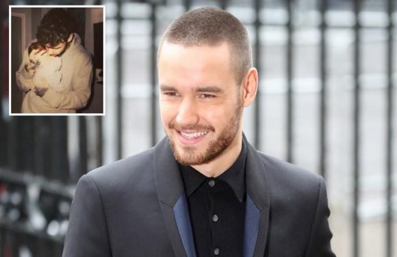 Liam Payne reveals there isn't a song about his son Bear on his album