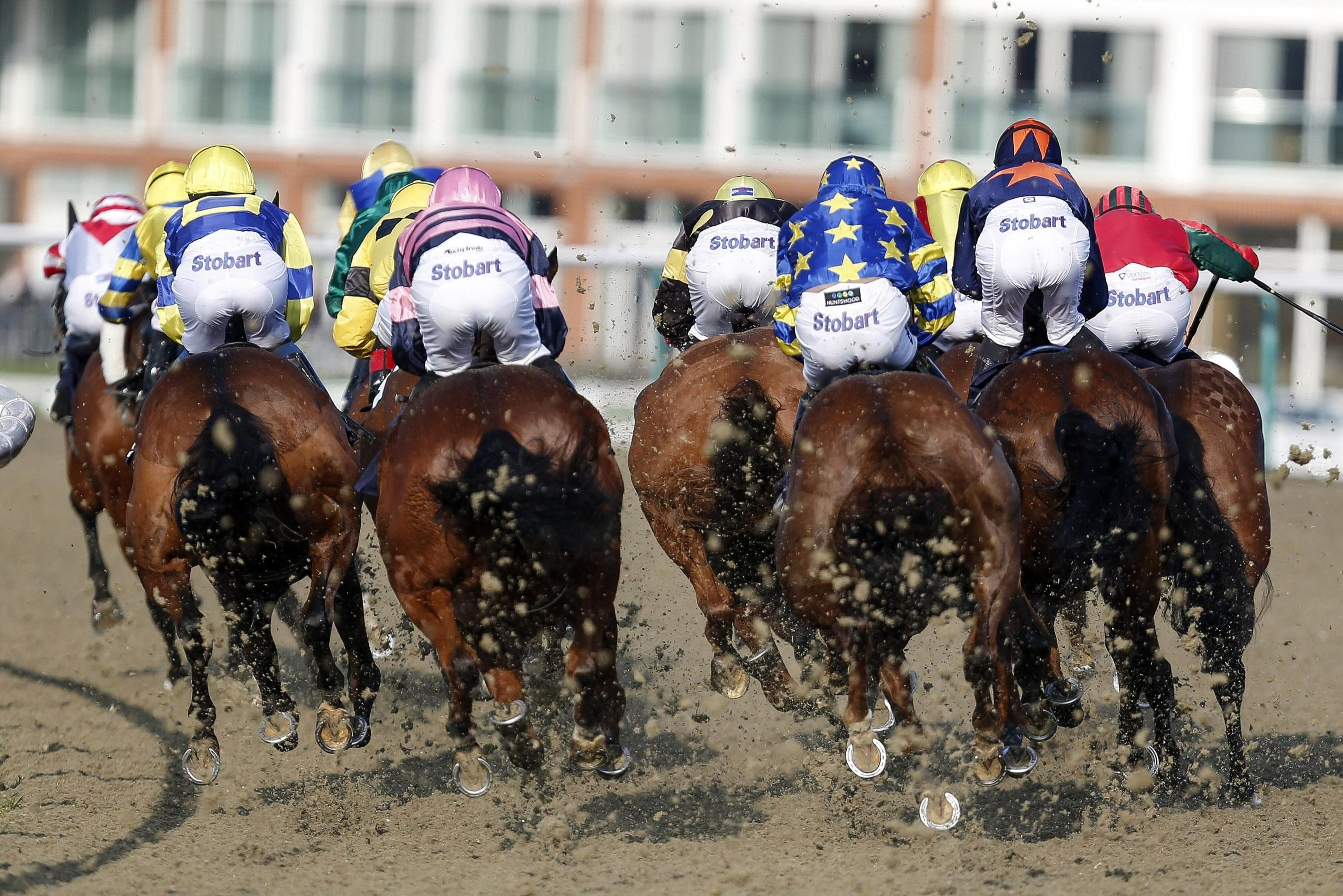 Horse racing tips: Lingfield- Templegate's betting preview for the racing this Monday, March 19