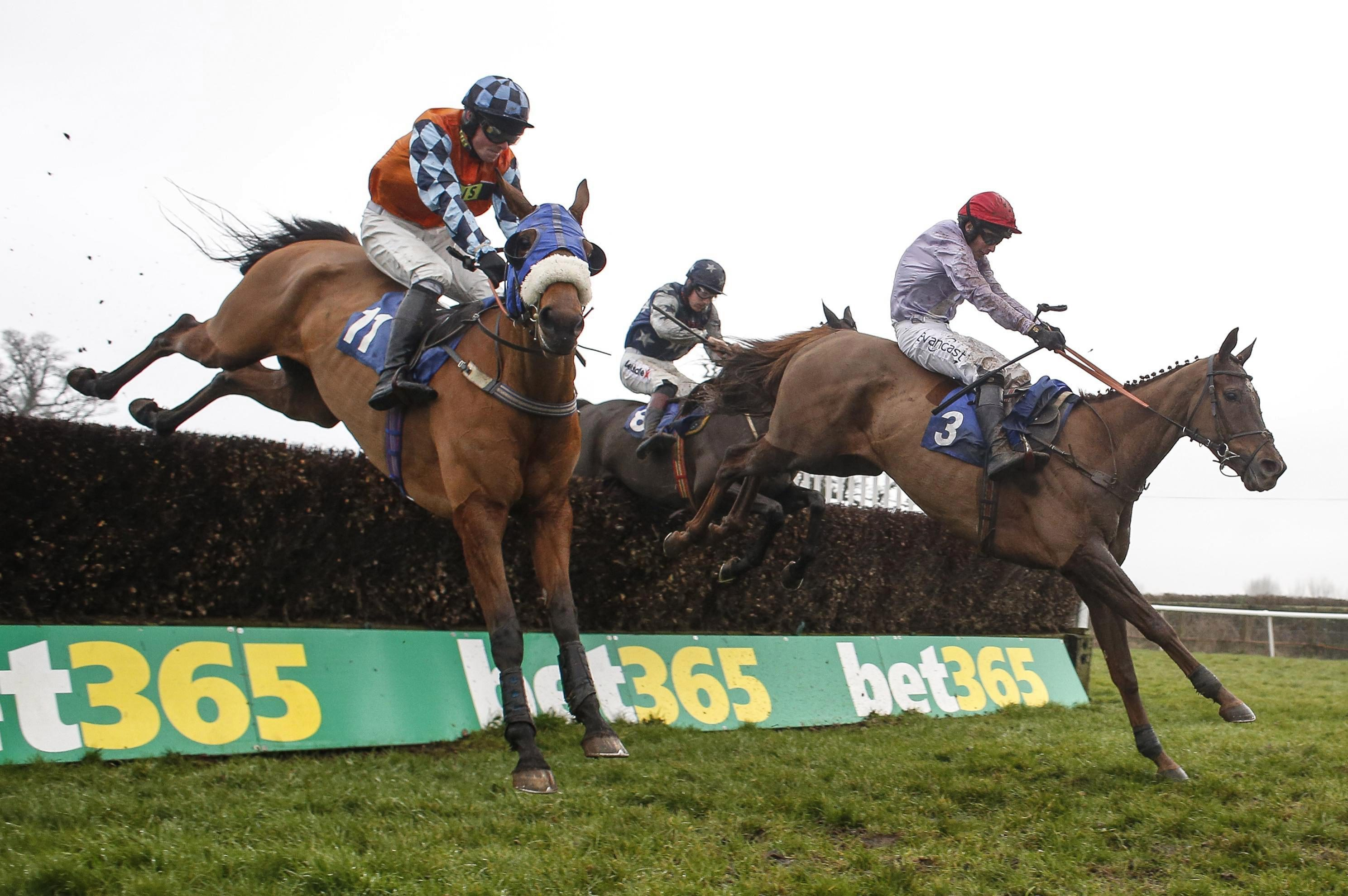Horse racing tips: Kempton, Lingfield, Wolverhampton and Southwell – Templegate's betting preview for the racing this Monday, March 5