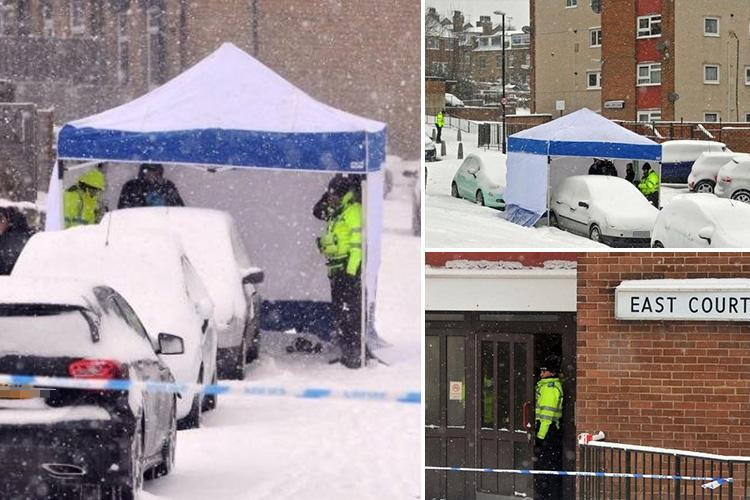 Storm Emma death toll and victims – schoolgirl in Cornwall is the latest person to die after fatal car crash caused by snow